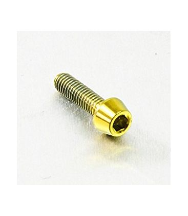 Titanium bolt M5x25 (Gold Edition)