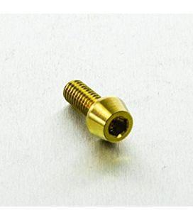 Titanium bolt M5x10 (Gold Edition)