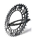 Rotor QX2 chainring (4 arms)